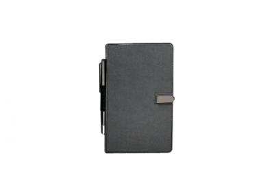 Diaries & Pen
